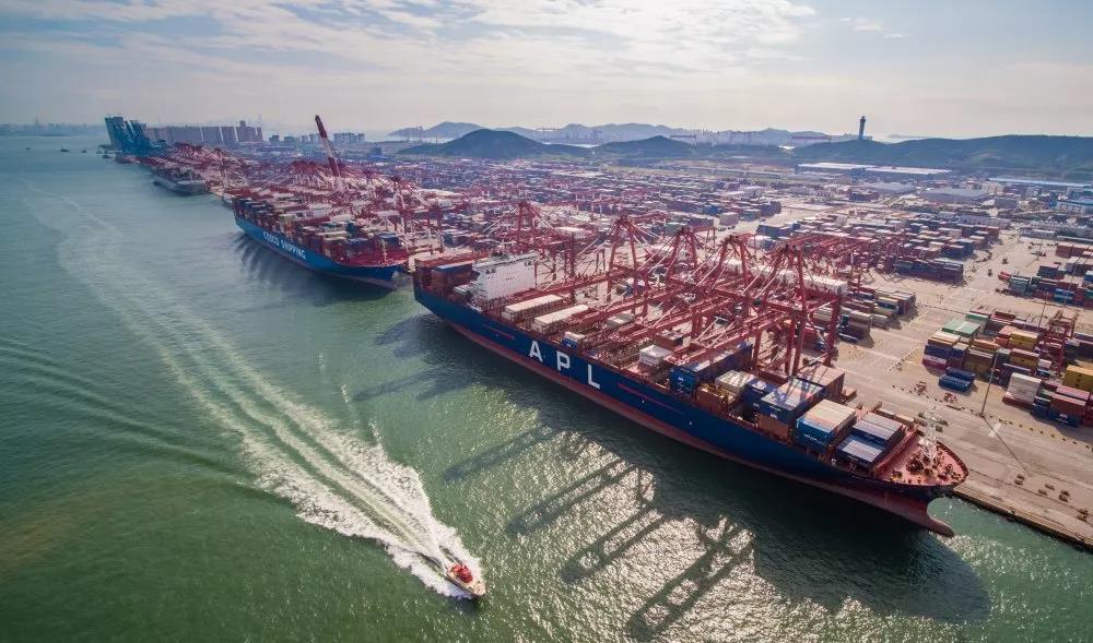 山东港口,在伟大时代中澎湃前行